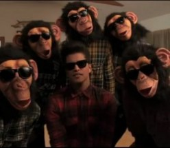 Bruno Mars Costumes from The Lazy Song - Bruno Mars & The Chimps