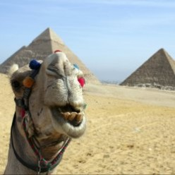 Egypt: Pyramids, Mummies, and Baklava