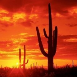 Arizona for Teachers and Travelers
