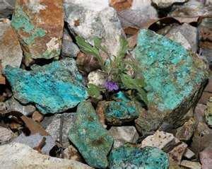 Copper found in Arizona