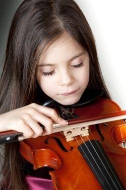 Image credit: http://www.amromusic.com/beginner-violins
