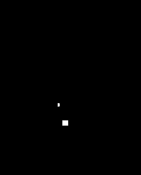malphighian tubules