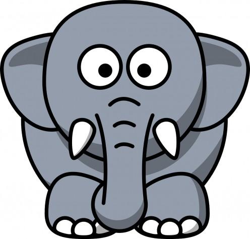 Why do elephants have wrinkles?