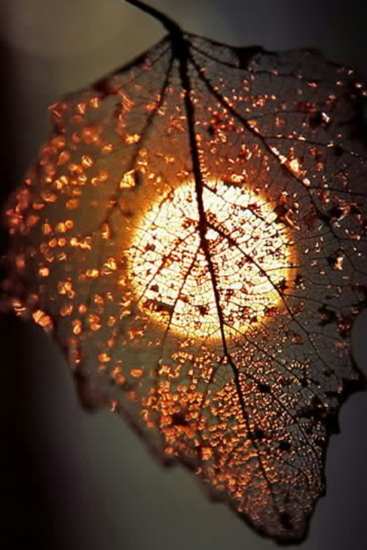 Setting Sun speaks its not the end of LIFE. The next Sunrise is HOPE