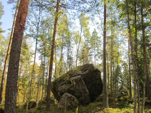Boulders of rocks left after the ice age.Finland was submerged in the ice age and was not even in the map millions of years ago.