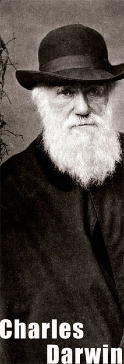 Charles Darwin 1881