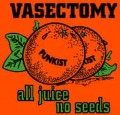 Reasons Real Men Have Vasectomies