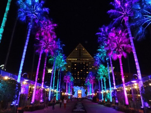 The Lit Causeway at Disney's Swan & Dolphin Resort Hotels at Christmas!