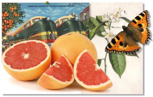 Grapefruit gift baskets