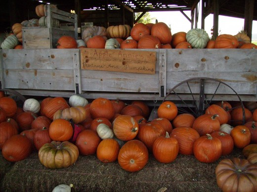 Old wagon overflowing with Orange, white and tan pumpkins