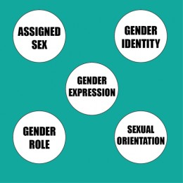 All of these are separate facets of identity and DO NOT overlap!