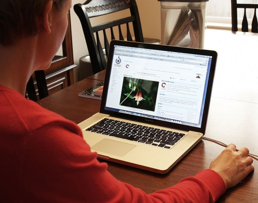 Woman organizing laptop