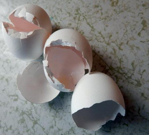 One of the easiest recyclables are eggshells.