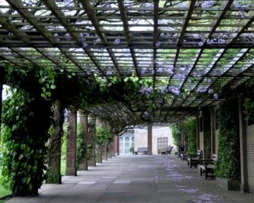Wisteria Walk Harrogate West Yorkshire England