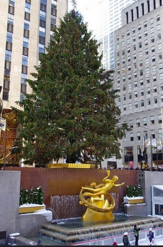 The Christmas tree in Rockefeller Center