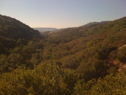 The Laguna Wilderness Area is popular with many hikers ... but it is easy to get lost in it!