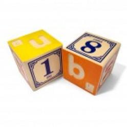 Braille Blocks for Blind Children