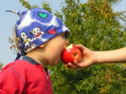 Don't deprive your little ones of health benefits of apples