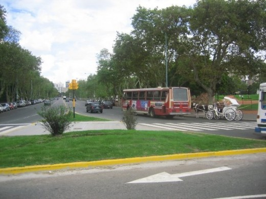 Buses are constantly in use in Buenos Aries (Palermo District)