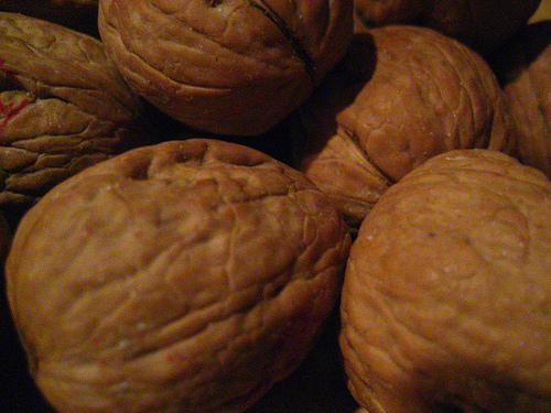 Walnuts are a great source of Omega 3 fatty acids. Photo by tvol.
