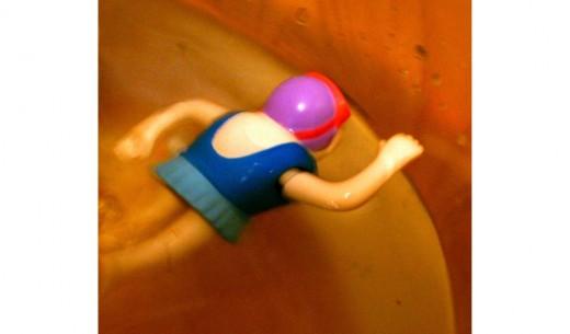 Bog snorkelling practice [cropped image]