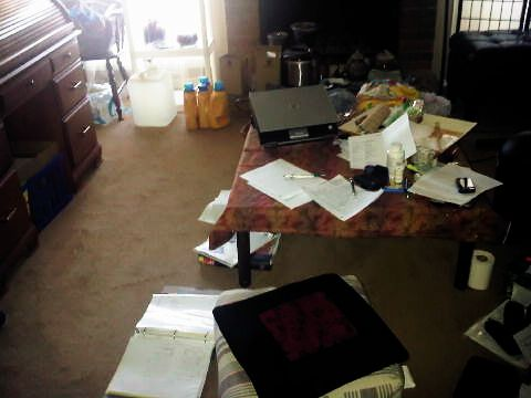 My living room a few months after the completion of my kotatsu table.