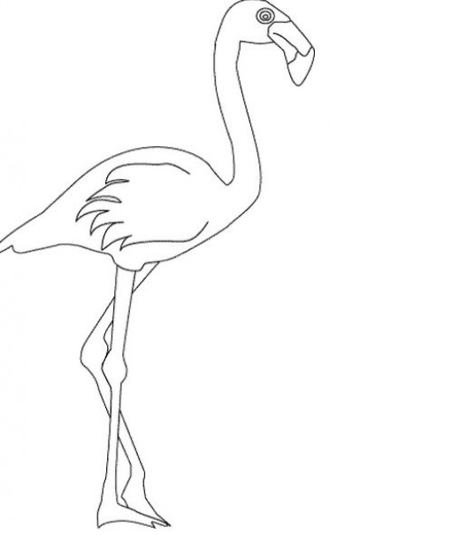 Flamingo digital stamp