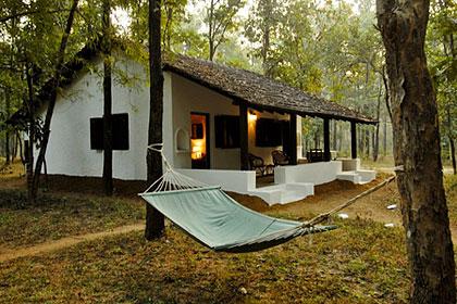 Jungle Camp at Kanha