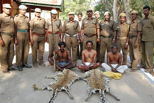 Poachers with Forest Guards