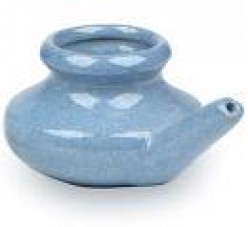 Dainty blue Neti Pot Credit: www.awholelottastuff.ca