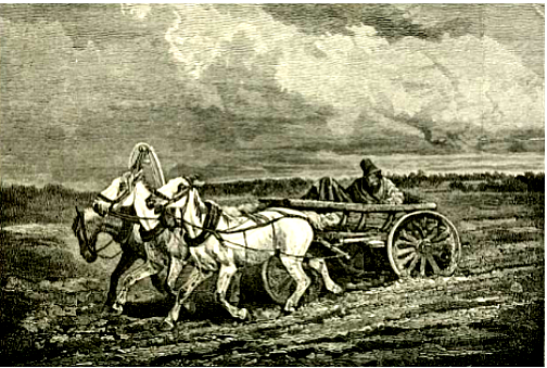 A three horse cart and wagon which was the way wagons were set up.