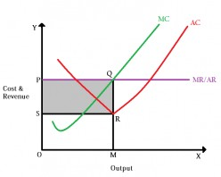 Types of Markets in Economics; Based on competition