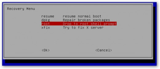 Boot Menu while choosing the recovery mode