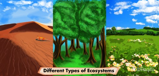 Deserts, forests, and meadows are terrestrial ecosystems.