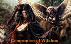 Companion of Witches
