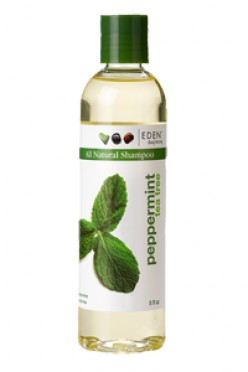Edens Body Work Peppermint Tea Shampoo