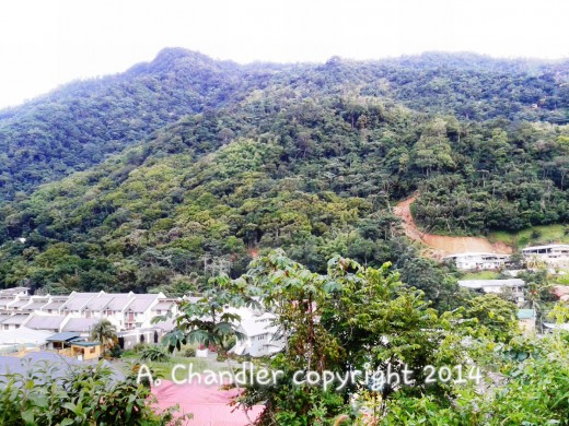 "Mountain Range in Eastern Trinidad "" Maracas St. Joseph"""
