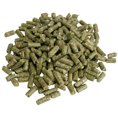 Rabbit pellets usually look like this. They are green to brown in color and cylindrical in shape. Sometimes, they may be red or spherical.