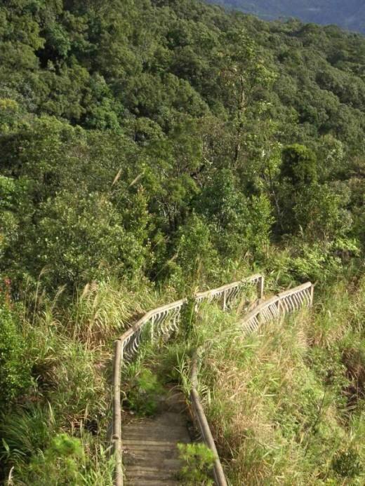 Hiking trail - Ba Na
