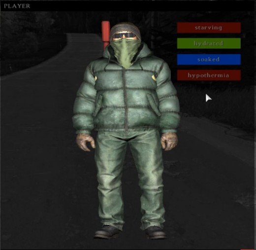 Hypothermia is indicated by a dark red bar in the player interface.