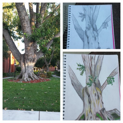Here is an example of a picture I drew.  I took a little time out of my day and sat in front of this beautiful tree with a sketch pad, a pencil,  and colored pencils. I let myself go and capture it's presence right before me.