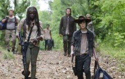 Do You Watch The TV Show The Walking Dead? Where Do You Think The Show Is Going?