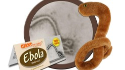 The Ebola Witch Hunt - Separating the Science from the Scandal