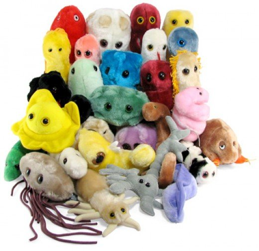 Need some cute, cuddly microbe to distract you from Ebola?  Name your poison.