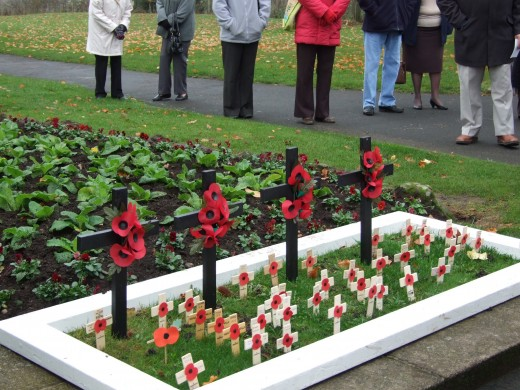 Kenilworth Rememberance Crosses and poppies.