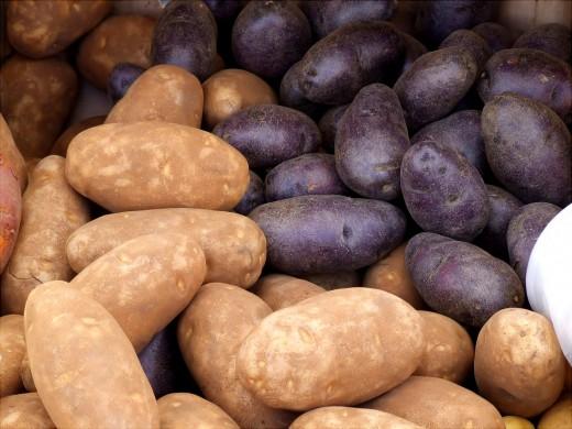 Sweet Potatoes Adamophoto
