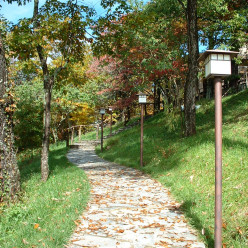 Enjoy a learning vacation in the Blue Ridge Mountains at Wildacres Retreat & Conference Center