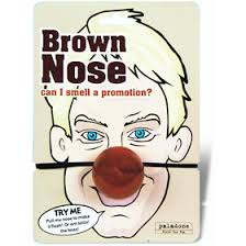 """""""Brown Nose"""" mask for work"""
