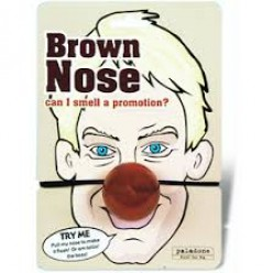 """Brown Nose"" mask for work"
