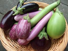 Eggplant comes in all sorts of colors, styles and shaped.